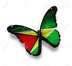 Guyana Flag Guyana Flag Butterfly Isolated On White Stock Photo Picture And