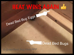 Sleep Number Beds Toronto Bed Bugs Pest Control Toronto Bed Bug Pest