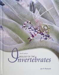 buy biology of invertebrates book online at low prices in india