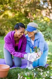 Comfort Keepers Ri Home Care Assistance Rhode Island A Trusted Local Provier