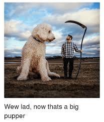 Wew Meme - aerman g wew lad now thats a big pupper dank meme on me me