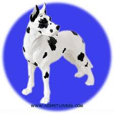 great dane figurines statues and gifts plus gifts by