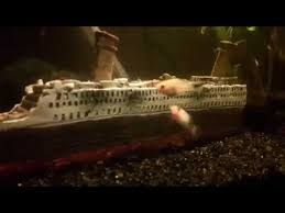 titanic aquarium