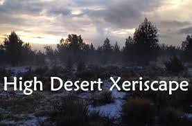 types of native plants types of native plants u2013 naturally landscaping the desert