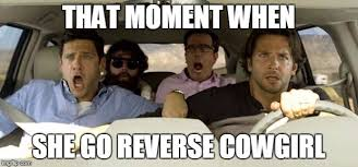 Cowgirl Memes - hangover imgflip