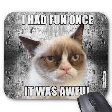 Grumpy Cat Meme I Had Fun Once - grumpy cat mousepad i had fun once mousepad grumpy cat and memes
