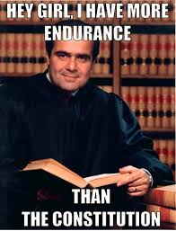 Meme Law - constitutional law meme scotus memes