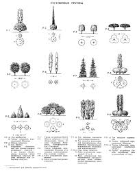 Architectural Symbols Floor Plan Site Plan Symbols Google Search Architectural Drawing