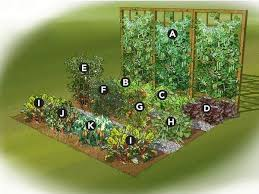 Home Vegetable Garden Ideas A Backyard Vegetable Garden Plan For An 8 X 12 Space From