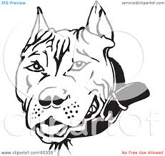 pit bull dogs clipart china cps