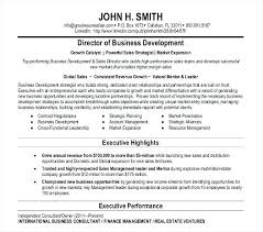 business development executive resume business development executive resume template director basic