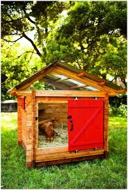 backyards fascinating book review reinventing the chicken coop