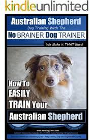 8 week old australian shepherd training australian shepherd dog training think like a dog but don u0027t eat
