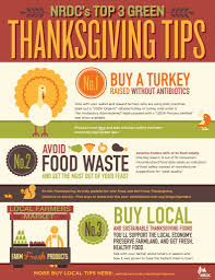 more important turkey day tips infographic