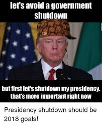 Shutdown Meme - let s avoid a government shutdown but first let s shutdown my