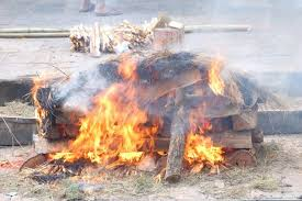 cremation procedure dying to be green now try bio cremation times of india