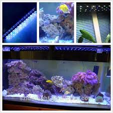 Led Aquarium Lighting 31 Best Led Aquarium Light Images On Pinterest Aquarium Led