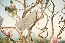 wedding wishes tree wishing tree göbekli tepe southeastern anatolia turkey travel