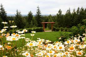 wedding venues spokane denison ridge weddings events perfecting dreams