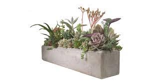succulent centerpiece concrete arrangement 24
