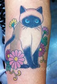 1000 ideas about siamese cat tattoos pionik