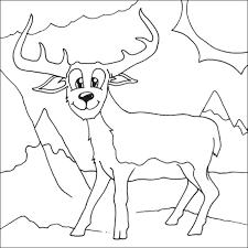 deer coloring picture