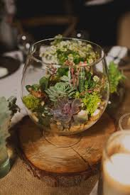 picture of a glass bowl with pebbles moss and succulents is a
