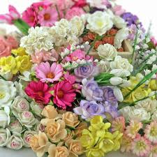 flowers direct promlee flowers wholesale flowers direct from thailand