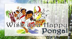 happy thanksgiving e cards happy pongal 2016 beautiful wishes greetings whatsapp video e