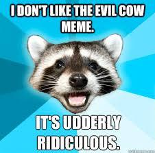 Evil Raccoon Meme - best of the evil cows meme smosh