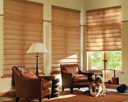 outstanding window blinds for living room also nice design trends
