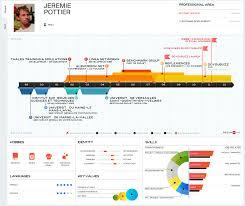1221 best infographic visual resumes visual resumes resume online builder
