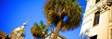 tybee island and savannah rentals over 200 homes and condos