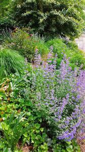 258 best in the garden images on pinterest gardens