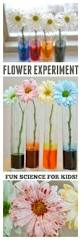25 best kid science ideas on pinterest kid science projects