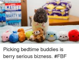 Fbf Meme - martymousehouse com marty m picking bedtime buddies is berry serious