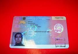 permesso di soggiorno stranieri permesso di soggiorno a punti guida alla costituzione per i