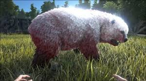 Are Bears Color Blind Direbear Official Ark Survival Evolved Wiki