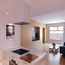 modern kitchen living room ideas spectacular modern kitchen living room interior decobizz com