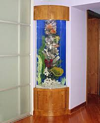 Decoration Of Fish Tank Feng Shui For Wealth With Fish Tanks