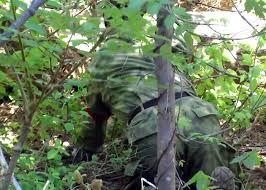 Color Blind Camouflage Test A Tacs Fg Concealment Test Tactical Gear Pinterest