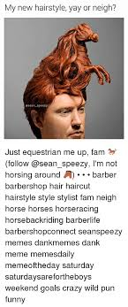 New Haircut Meme - my new hairstyle yay or neigh asean speezy just equestrian me up