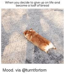 I Give Up Meme - when you decide to give up on life and become a loaf of bread
