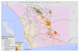 San Diego Mts Map by Distribution Goldspotted Oak Borer