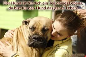 schöne hundesprüche homepage hund hundebilder mit sprüchen hundesprüche