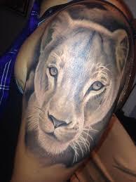 lioness portrait tattoo by stevie monie tattoos