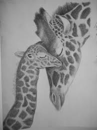giraffe and baby pencil drawing michelle u0027s drawings pinterest