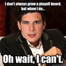 Beard Meme Funny - i don t always grow a playoff beard but when i do oh wait i