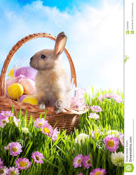 easter bunny baskets easter basket decorated eggs and easter bunny stock photo 23598990