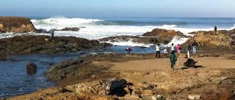 beach of glass glass beach from trash to treasure fortbragg com
